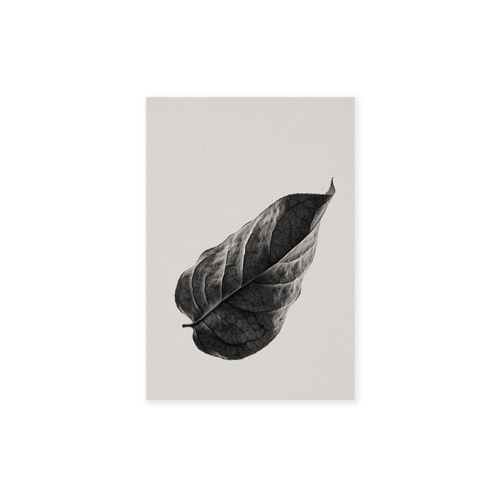 Sabi Leaf 01 30 x 40 cm von Paper Collective