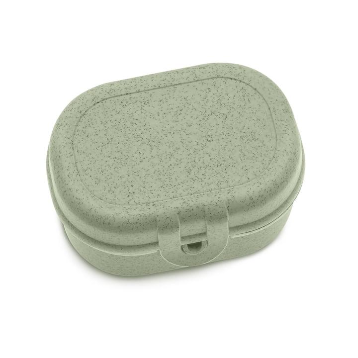 Pascal Mini Lunchbox in organic green von Koziol