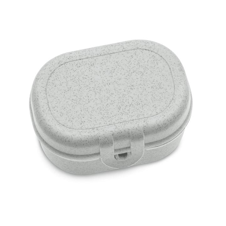 Pascal Mini Lunchbox in organic grey von Koziol