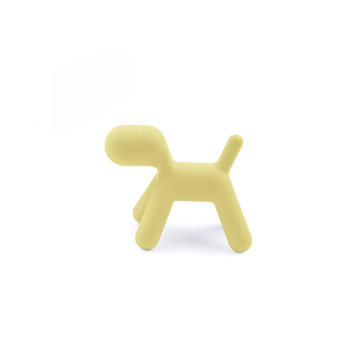 Puppy S von Magis Me Too in gelb
