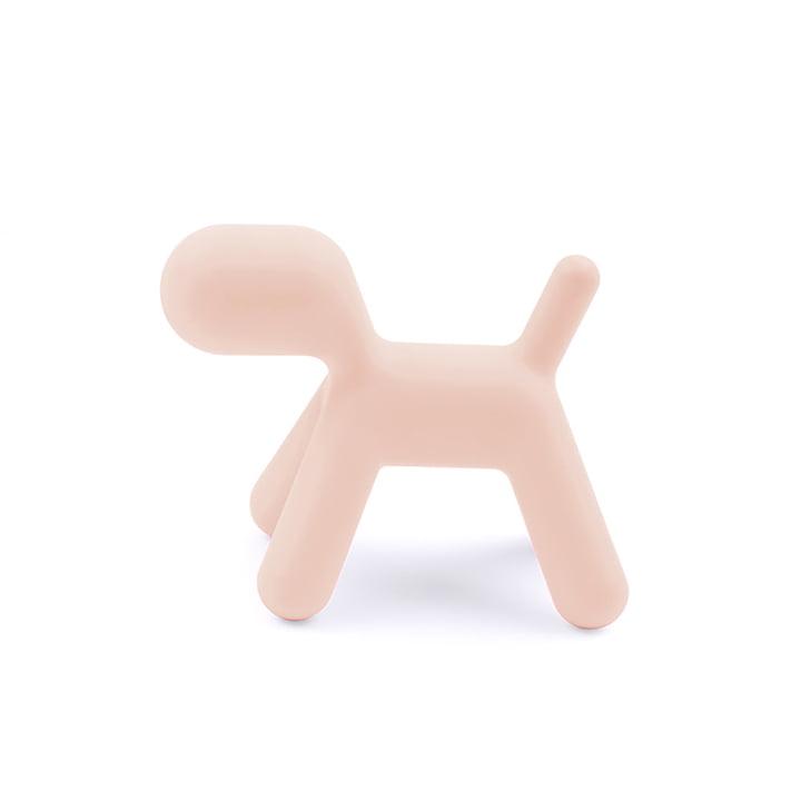 Puppy L von Magis in pink