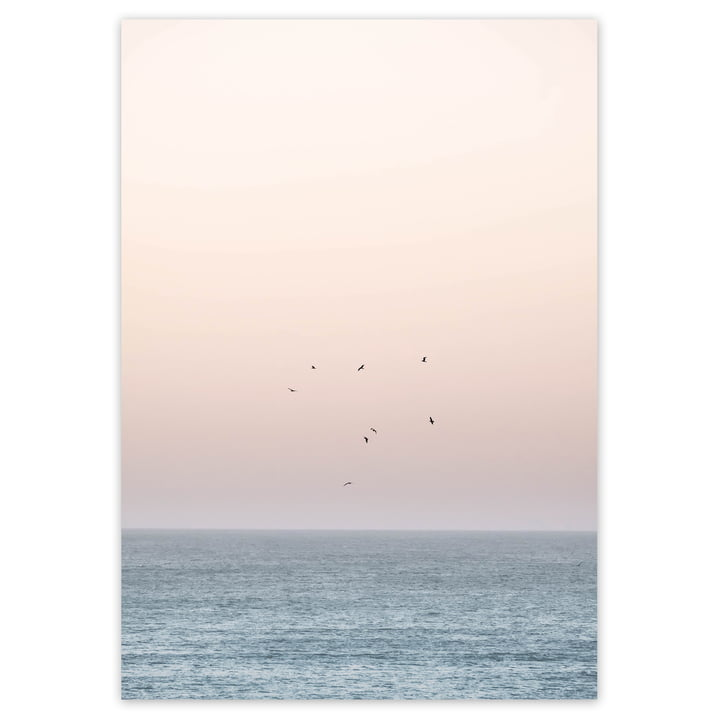 artvoll - Sunset on the Horizon Poster