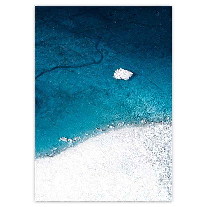 artvoll - Arctic I Poster