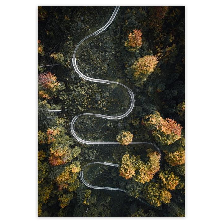 artvoll - Serpentine Poster