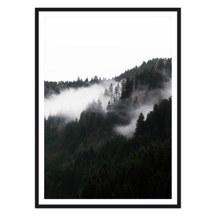 artvoll - Foggy Forest Poster mit Rahmen, schwarz