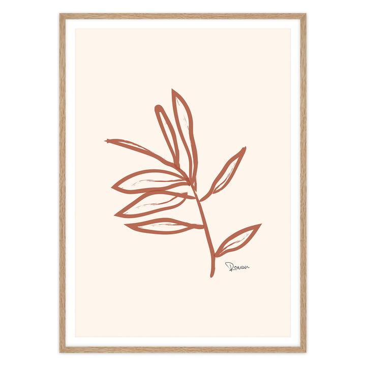 artvoll - Leaf No.1 Poster mit Rahmen, Eiche natur