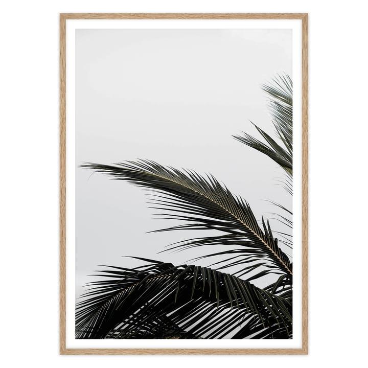 artvoll - Palm Leaf Poster mit Rahmen, Eiche natur