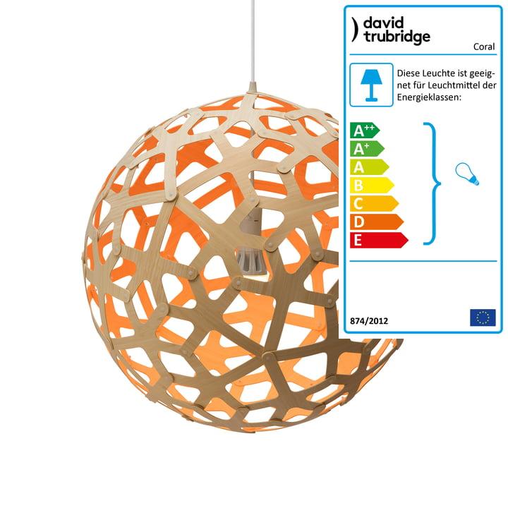 Coral Pendelleuchte Ø 60 cm von David Trubridge in natur/ orange
