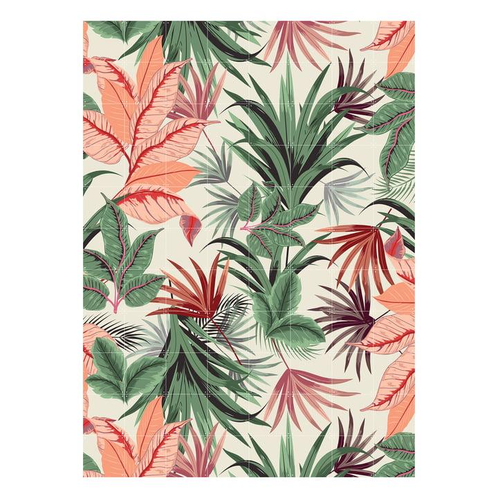 Pink Jungle 160 x 220 cm von IXXI