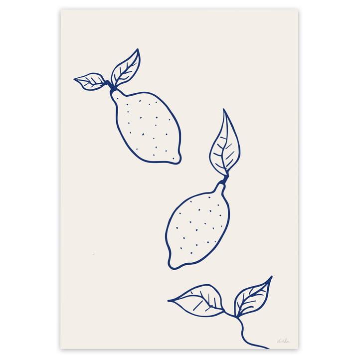 Küchen Poster mit Zitronen von artvoll