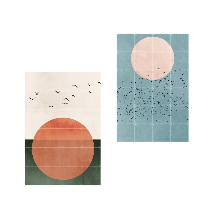 2 in 1 Free Souls Fly Away Poster von IXXI in 80 x 120 cm