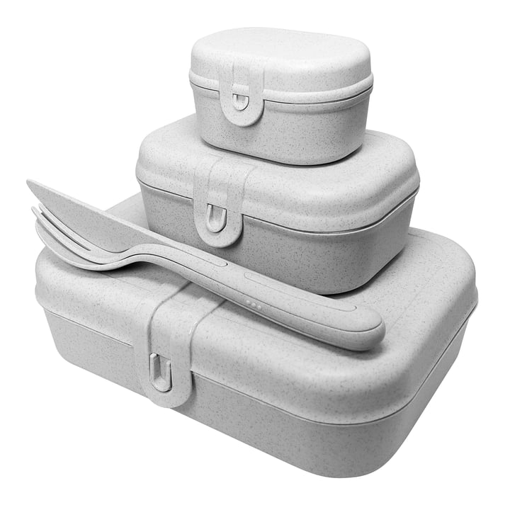 Pascal Ready Lunchbox-Set mit Klikk Besteck von Koziol in organic grey