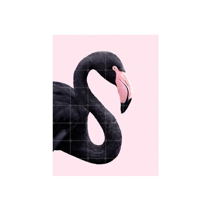 IXXI - Black flamingo Poster, 120 x 160 cm