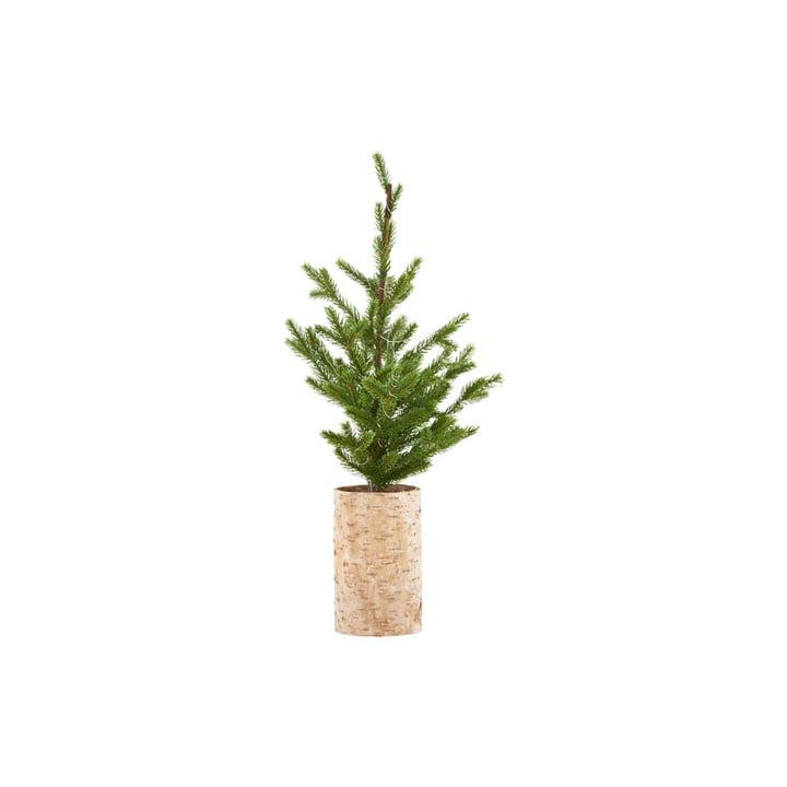 Weihnachtsbaum mit LED-Beleuchtung, H 64 cm von House Doctor