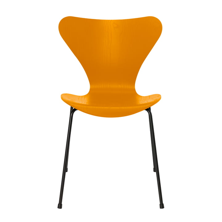 Serie 7 Stuhl von Fritz Hansen in Esche burnt yellow gefärbt / Gestell schwarz