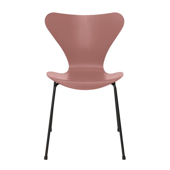Serie 7 Stuhl von Fritz Hansen in Esche wild rose gefärbt / Gestell schwarz