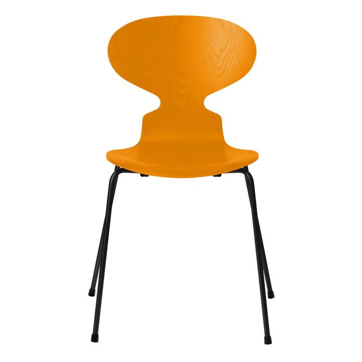 Ameise Stuhl von Fritz Hansen in Esche burnt yellow gefärbt / Gestell schwarz