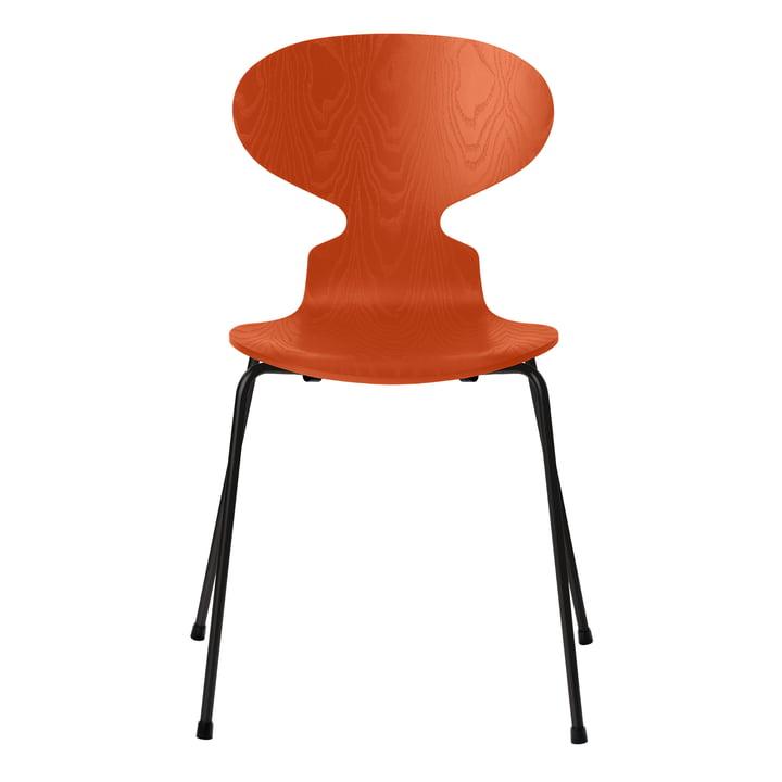 Ameise Stuhl von Fritz Hansen in Esche paradise orange gefärbt / Gestell schwarz