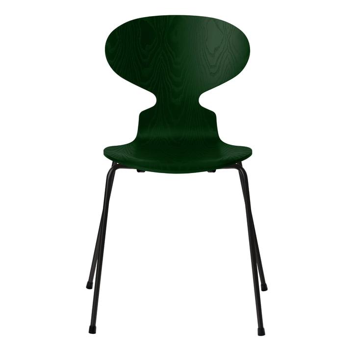 Ameise Stuhl von Fritz Hansen in Esche evergreen gefärbt / Gestell schwarz