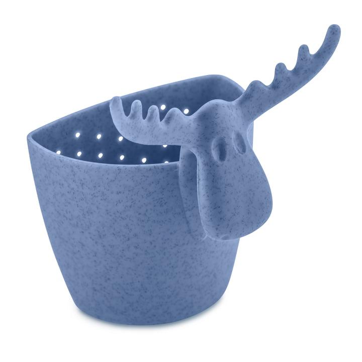 Das RUDOLF Teesieb von Koziol in organic blue
