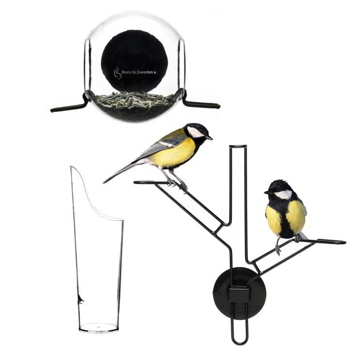 Bird Feeder Kit von Born in Sweden