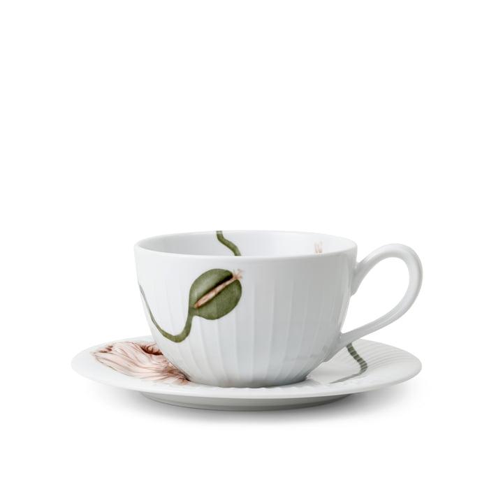 Die Hammershøi Poppy Teetasse mit Untertasse von Kähler Design, 38 cl, weiß