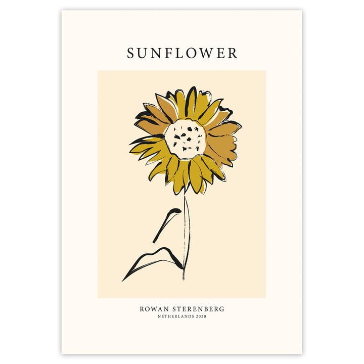 Das Mother Nature, Sunflower - Poster von artvoll ohne Rahmen