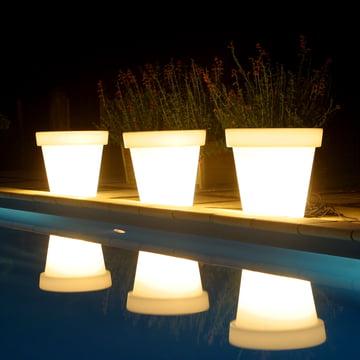 Bloom Pot mit Beleuchtung in Weiß
