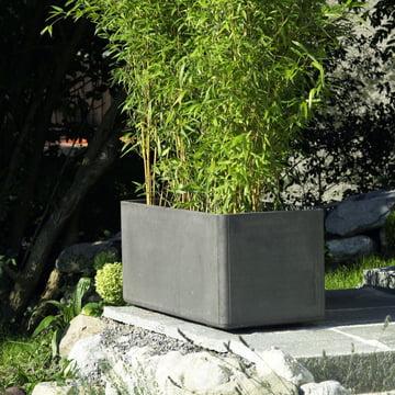 Eternit - Delta Pflanzentopf 45
