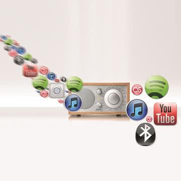 Tivoli Audio - Model One BT, kirsche - mögliche Funktionen