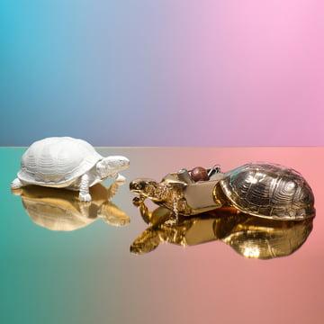 Areaware - Turtle Box, weiß, gold