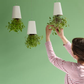 Sky Planter Recycled von Boskke