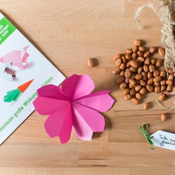 Spende Welthungerhilfe: Saatgut