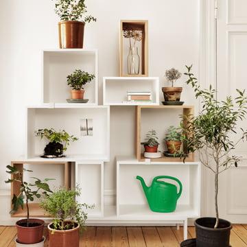 Muuto - Stacked Regalsystem - Pflanzen