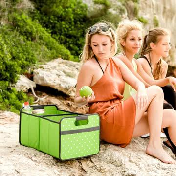 meori - KLASSIKER Faltbox 30 Liter, oxid grün Punkte