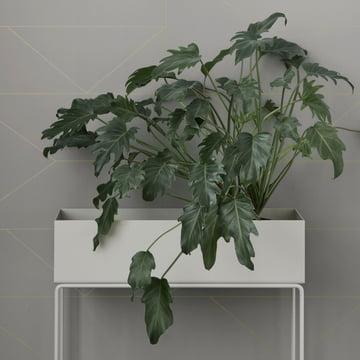 Plant Box von ferm Living in Weiß