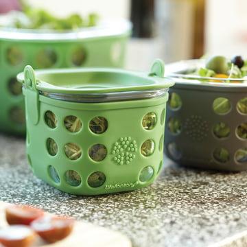 Glas Food-Container von Lifefactory