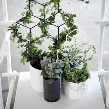 Menu - Cylindrical Blumentopf