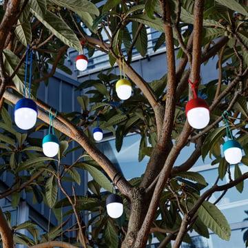 Clover LED-Licht im Garten