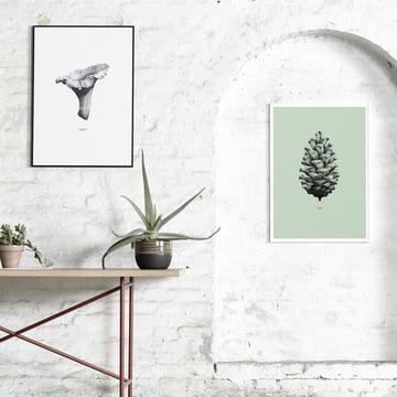 Paper Collective - 1:1 Chanterelle (weiß) / 1:1 Pine Cone (minzgrün)