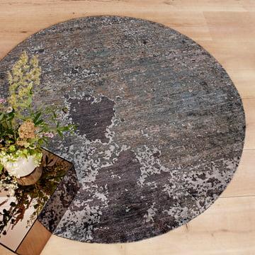 Der Massimo - Moon Night Teppich mit Pflanze im Raum platziert
