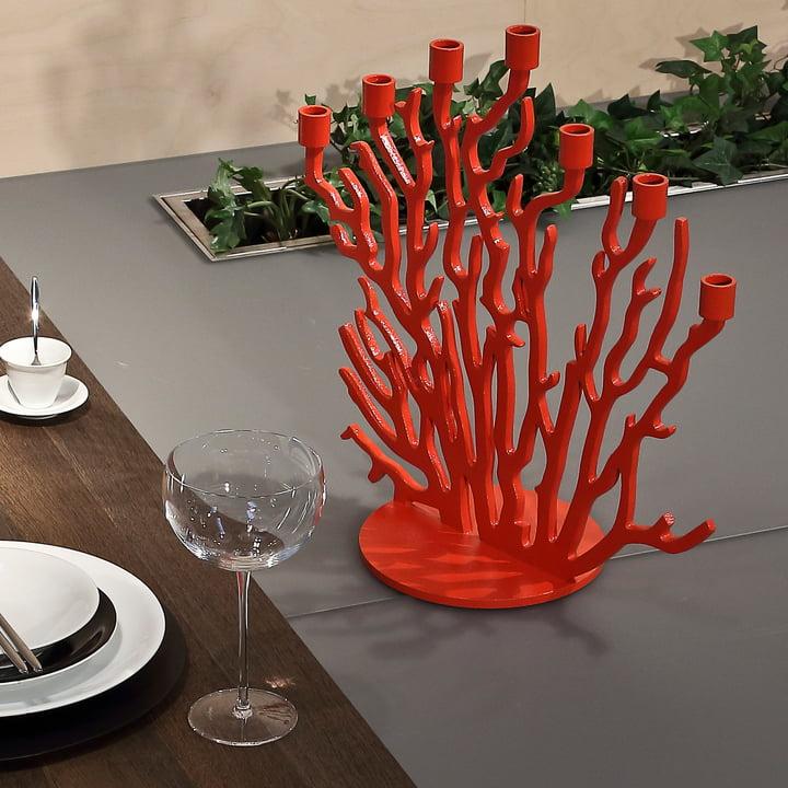 Rote Äste für sieben Kerzen