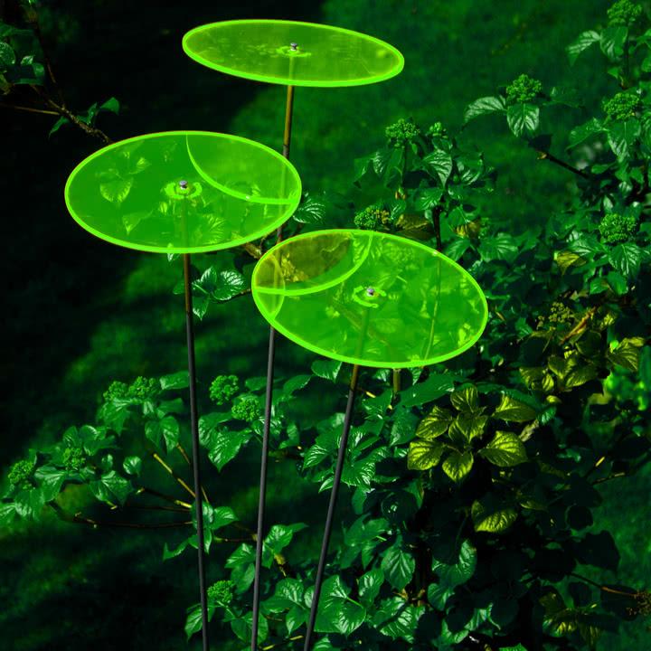 Cazador del sol - Uno Sonnenfänger, grün