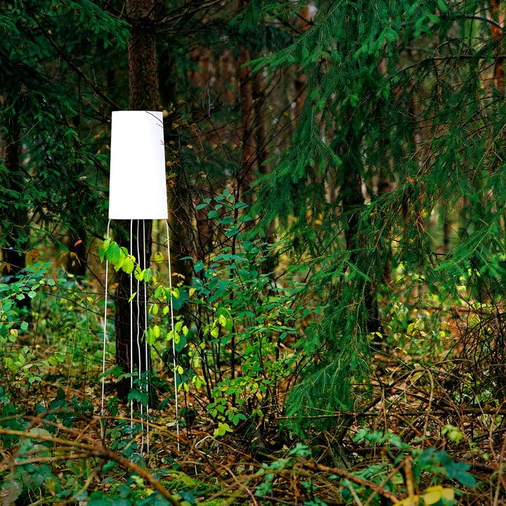 frauMaier - Slimsophie Stehleuchte, weiß - Ambiente, Wald