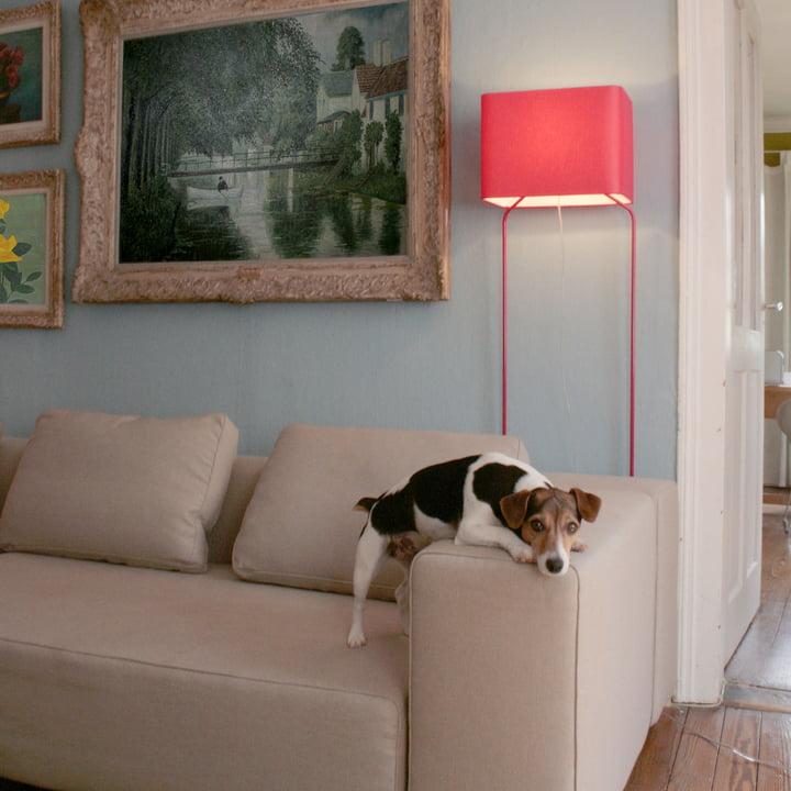 frauMaier - ThinLissie, rot - Ambiente, Wohnzimmer - mit Hund