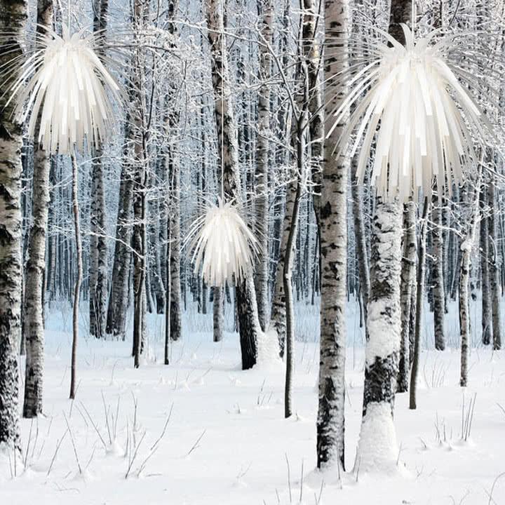 Klein & More - Snowflower - Wald, Schnee