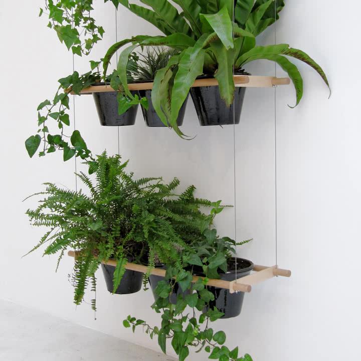 Etcetera pflanzsystem von edition compagnie for Zimmerpflanzen in szene setzen
