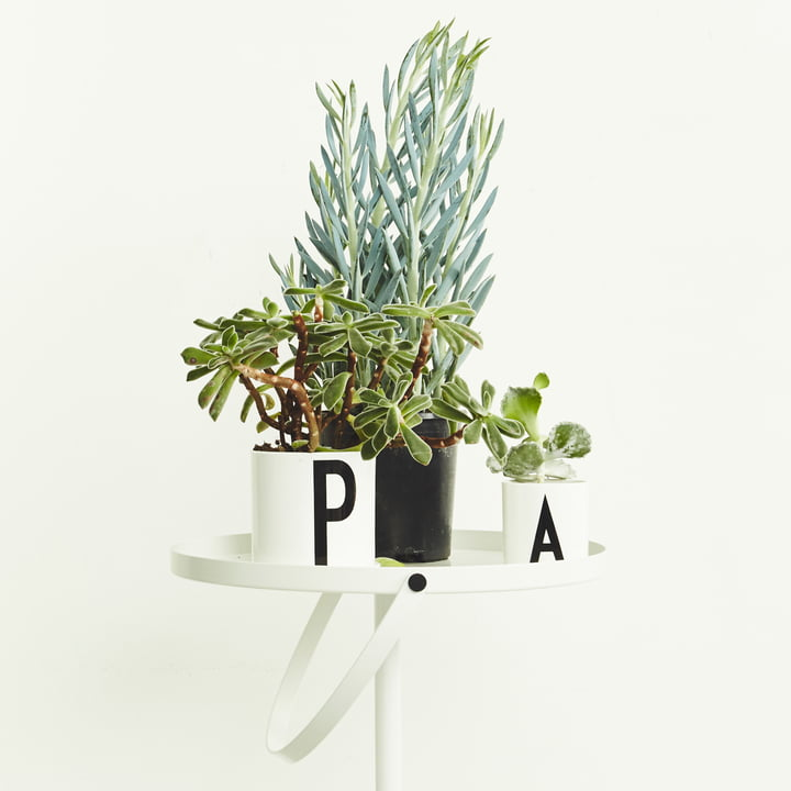 Grün, grüner, Design Letters