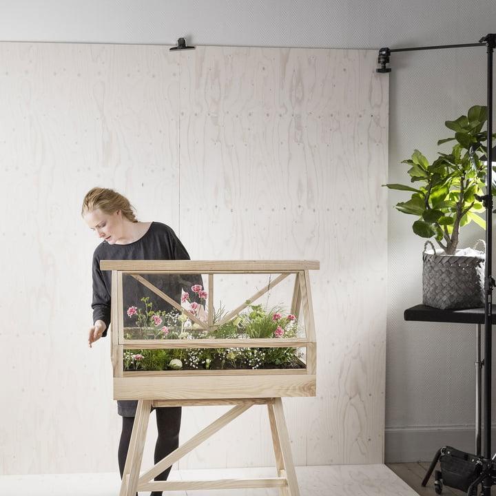 Das Greenhouse Terrarium von Design House Stockholm