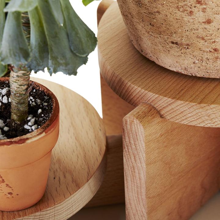 Areaware - Pflanzen Podest Set